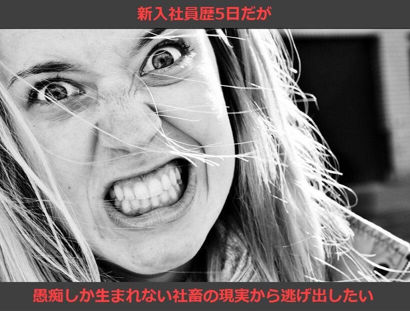 f:id:Nuohman:20170408150132j:plain