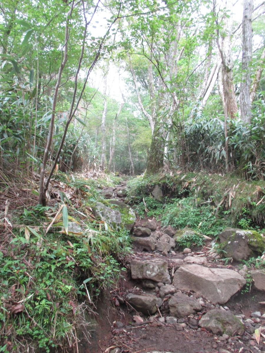 f:id:Nyaokichi:20200921191715j:plain