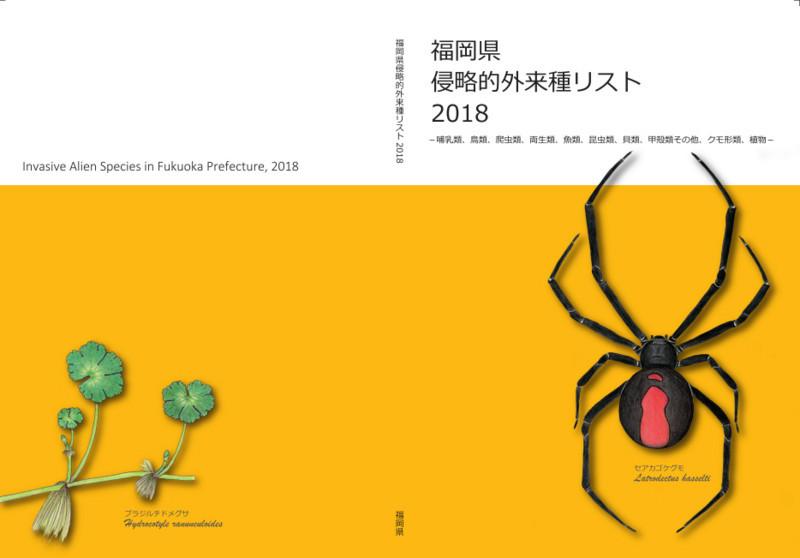 f:id:OIKAWAMARU:20180418173605j:image