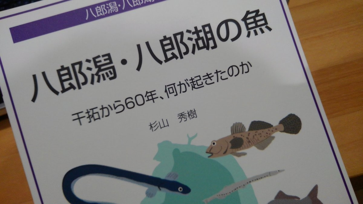 f:id:OIKAWAMARU:20190627224652j:plain