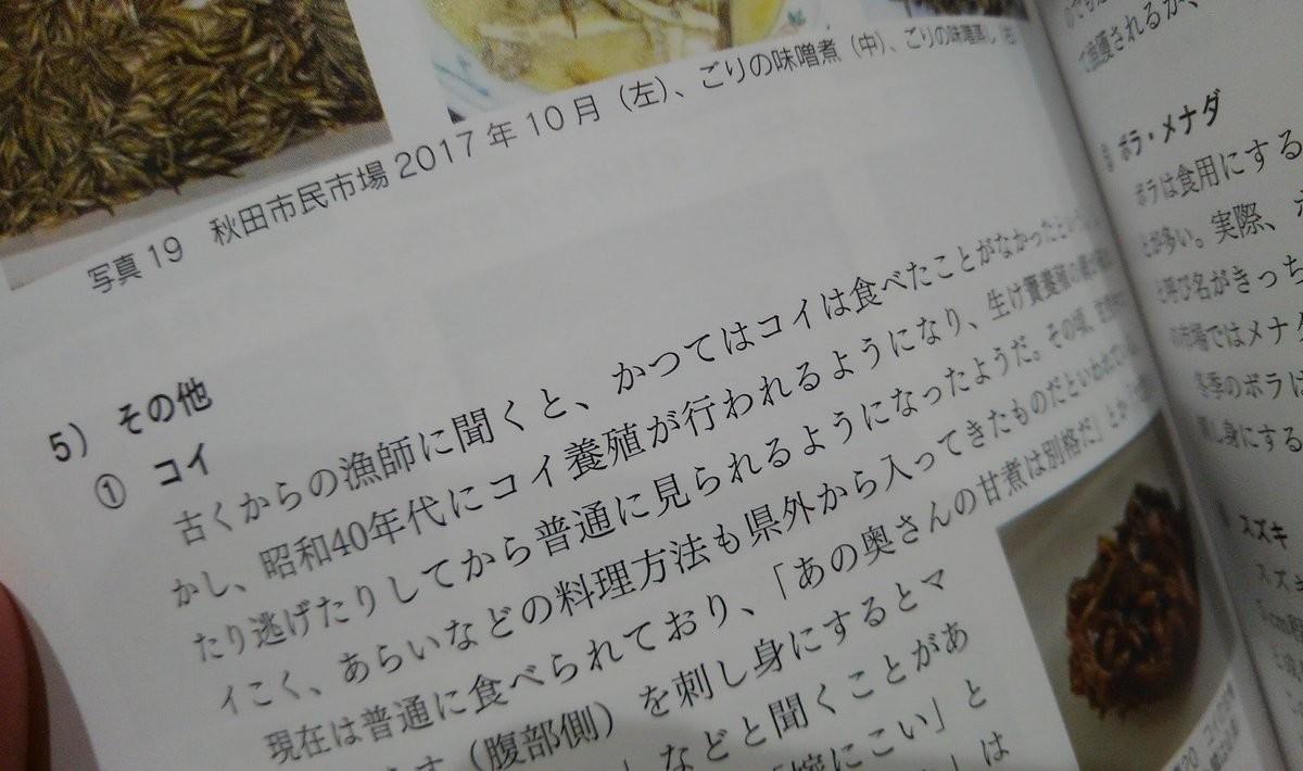 f:id:OIKAWAMARU:20190627224700j:plain