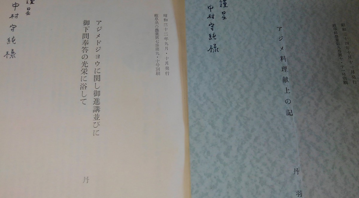 f:id:OIKAWAMARU:20191010214436j:plain