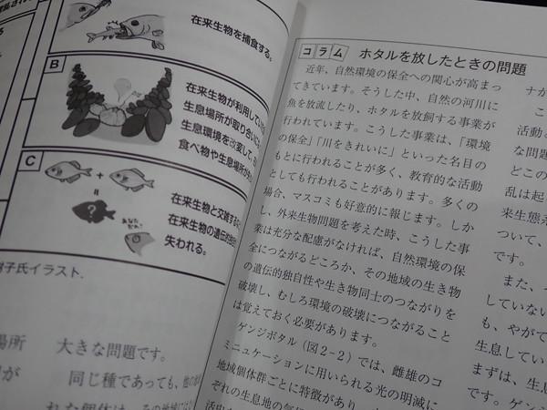 f:id:OIKAWAMARU:20200327222430j:plain