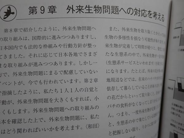f:id:OIKAWAMARU:20200327222440j:plain