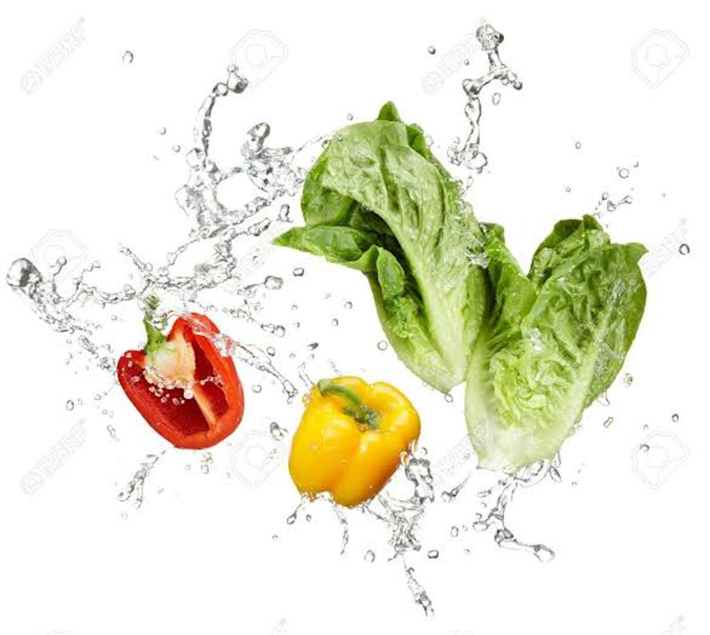 f:id:OL_diet:20210221001114j:image