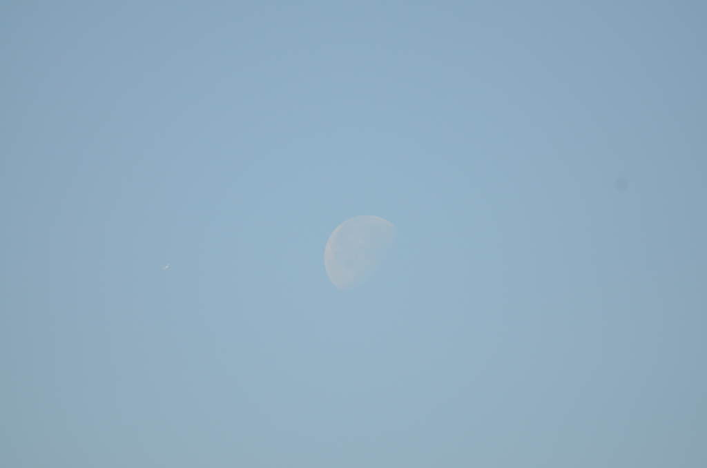 昼間に見えた下弦の月