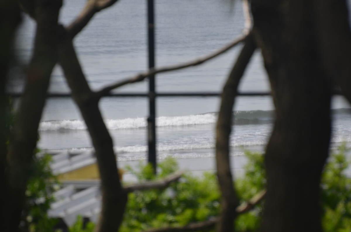5月5日午前9:00頃の茅ヶ崎パーク