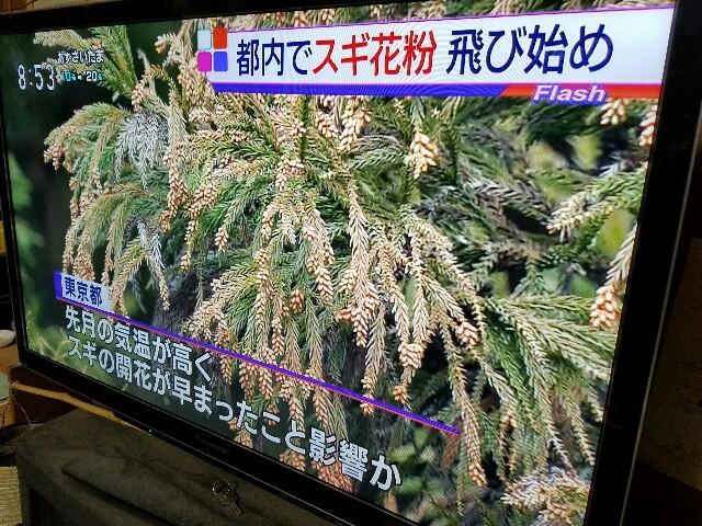 f:id:OOTANI-takanori:20170213213039j:image