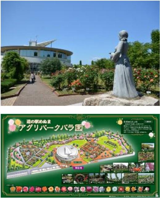 f:id:OOTANI-takanori:20170516140134j:image