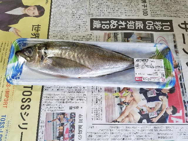 f:id:OOTANI-takanori:20170712145932j:image