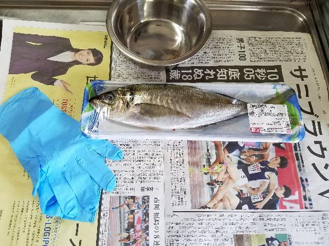 f:id:OOTANI-takanori:20170714102827j:image
