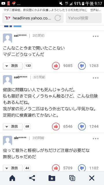 f:id:OOTANI-takanori:20170724212315j:image