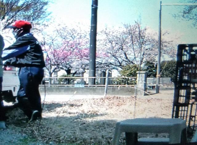 f:id:OOTANI-takanori:20180331102207j:image