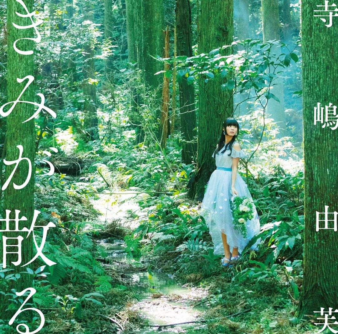 f:id:OOyamamura:20190528011816j:plain