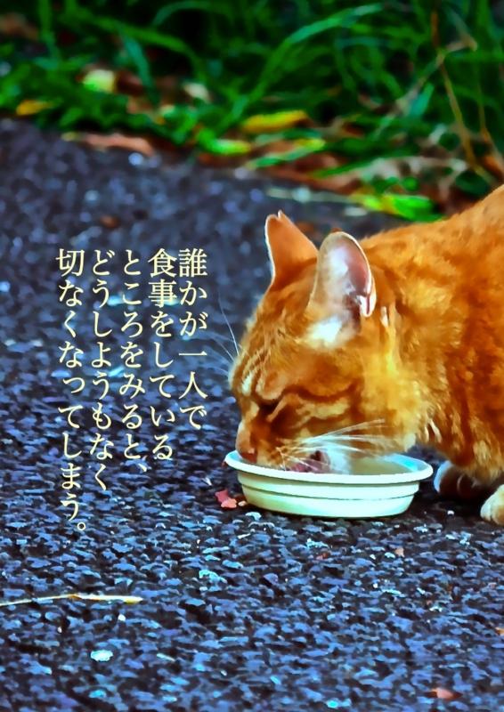 f:id:OUKI_Bouichirou:20150403173932j:plain
