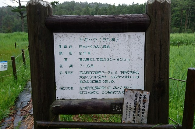 f:id:OgumakiVet:20180815214838j:image