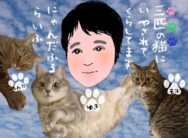f:id:OgumakiVet:20181021004134j:image