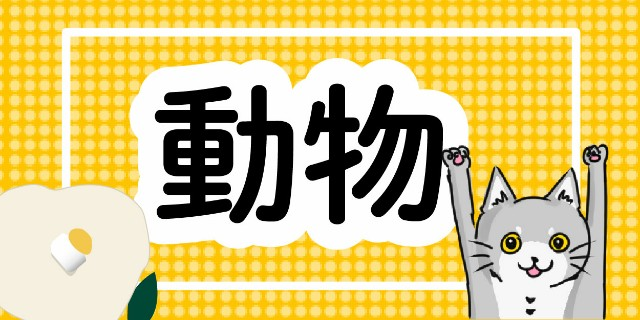 f:id:OgumakiVet:20190308083431j:image