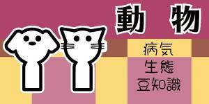 f:id:OgumakiVet:20190308105134j:image