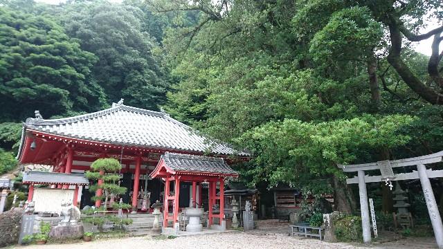 f:id:OgumakiVet:20190806124156j:image