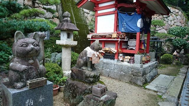 f:id:OgumakiVet:20190806124608j:image