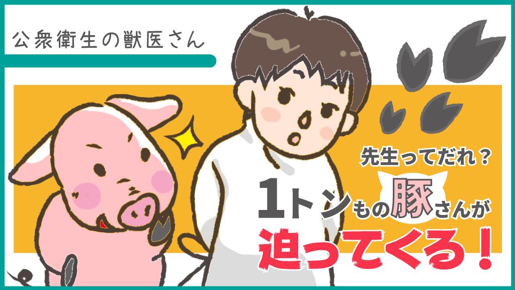 f:id:OgumakiVet:20200606194104p:plain
