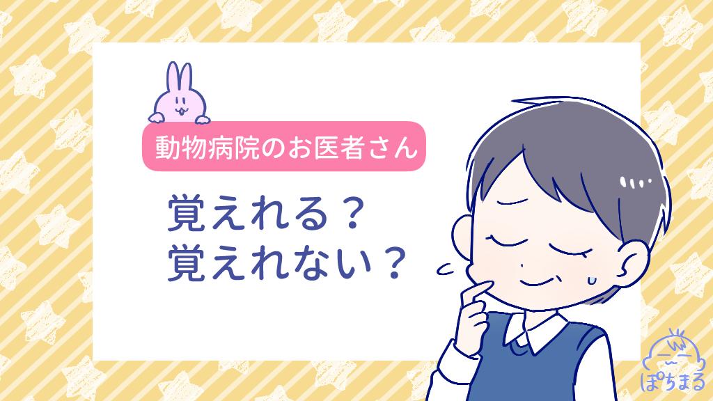 f:id:OgumakiVet:20200705083326p:plain