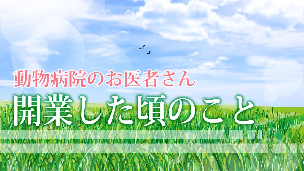 f:id:OgumakiVet:20200811142128p:plain