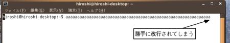 f:id:OkadaHiroshi:20100511231948p:image