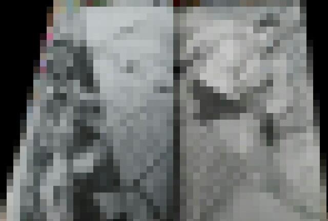 f:id:Omoplata0129:20170410110731j:image