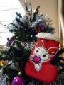 まちだ献血ルームcomfy♪ ◇クリスマスツリー&靴下◇