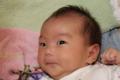 20101114 九龍