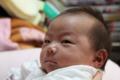 20101117 九龍