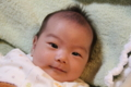 20101124 九龍