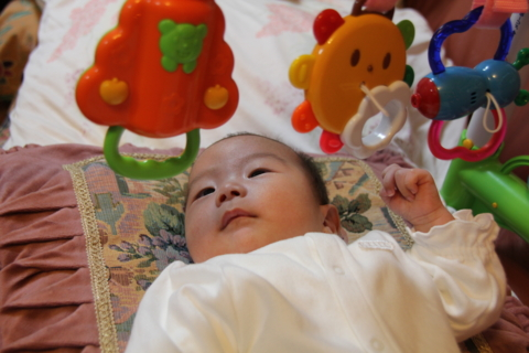 20101202 九龍