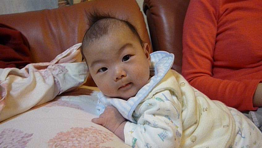 [20110117][九龍動画]