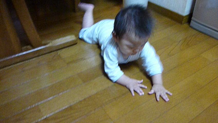[20110630][九龍動画]