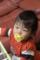 20111104 九龍