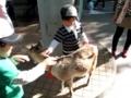 [20130428][上野動物園]