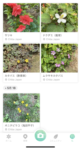 f:id:Osakana3k:20200527214336p:plain