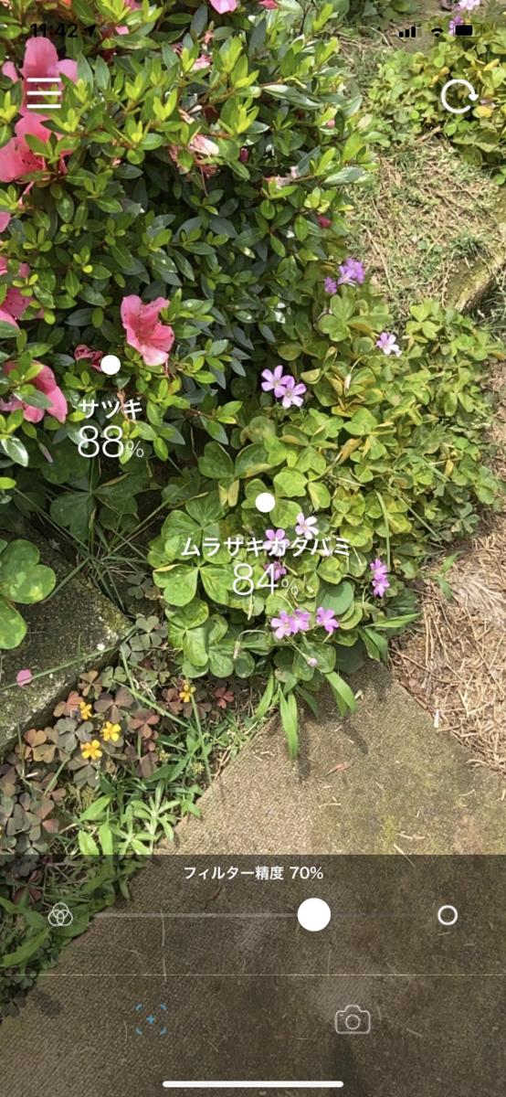 f:id:Osakana3k:20200527222005p:plain