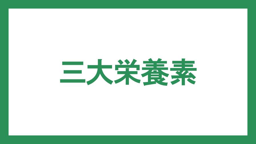 f:id:Otonashi_Rider:20190706012824j:plain