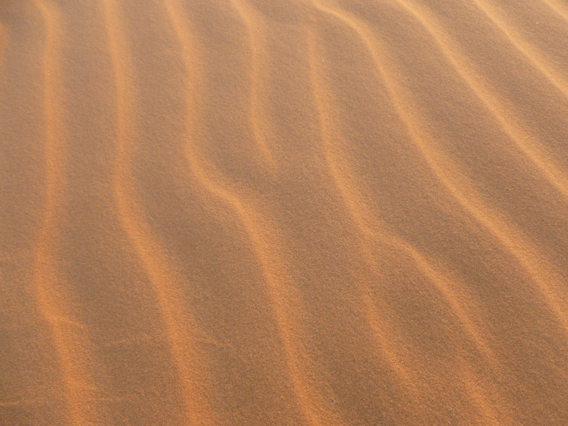 f:id:Oxonian:20110319063654j:image