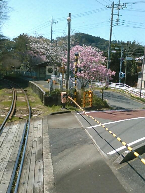 f:id:Oyamada23:20200327201855j:plain