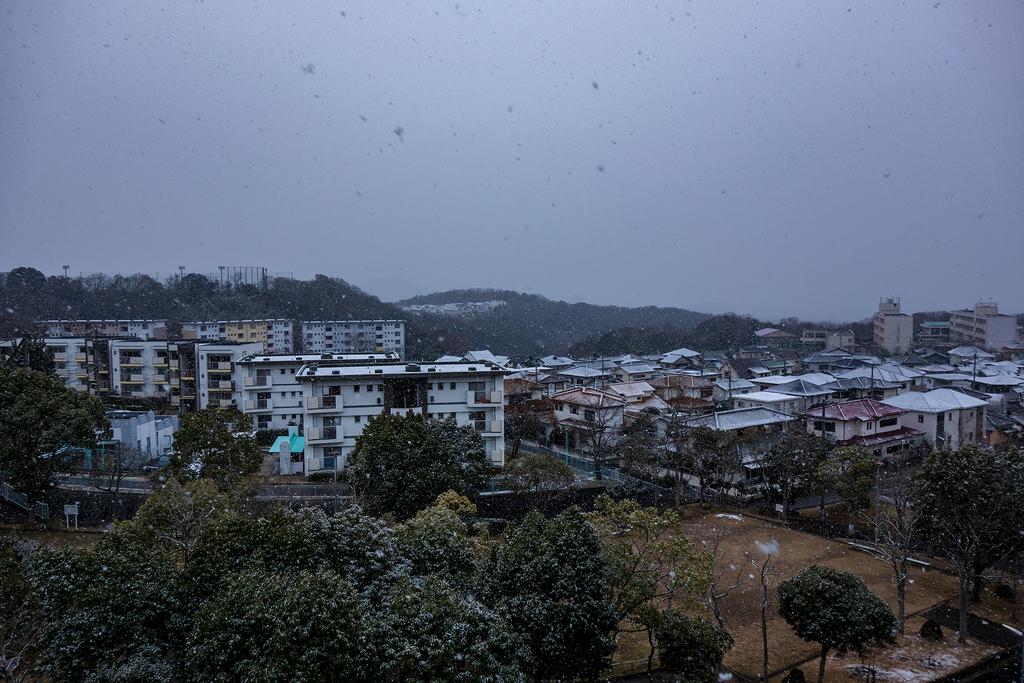 2019初積雪