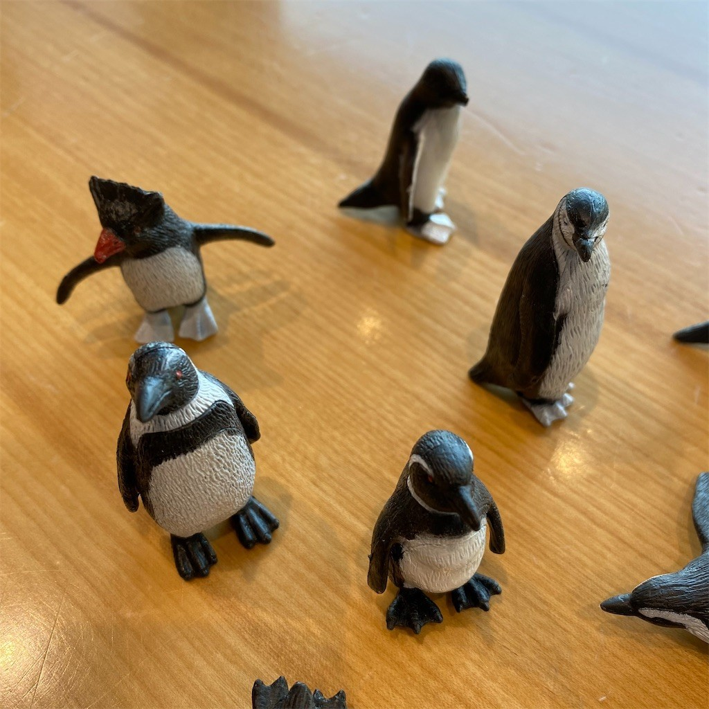 f:id:PENGUINS_PROJECT:20210301153739j:image