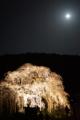 京都新聞写真コンテスト月あかり