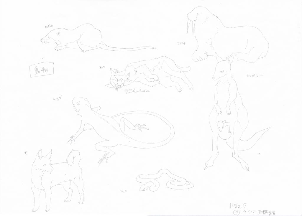 動物(図鑑参考:2011)