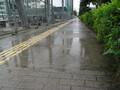 県立西大寺高校西側の歩道の水たまり