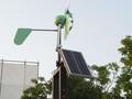 風車 緑化フェア会場